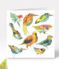 Tereza-Cerhova-originalni-ilustrace-akvarelovi-ptaci