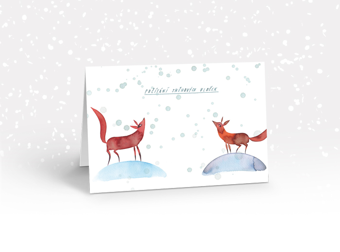 Tereza-Cerhova-praci-karta-pocitani-snehovych-vlocek